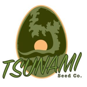 Tsunami Seed Co. - Cannabis Seed Breeder